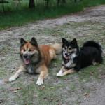 Mika & Yndí