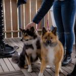 1Wesley & Yvonne 05-09-2015-155